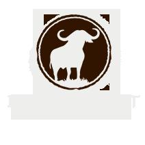 Buffalo Drift Logo